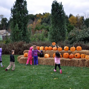 Children enjoying jack-o'-lanterns at Pumpkin Festival