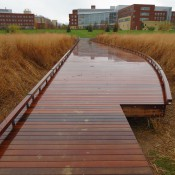 View toward East Sub-Campus across boardwalk
