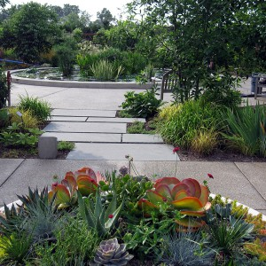 Looking from Oasis Garden Terrace toward Lotus Pool