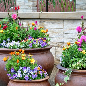 Spring-containers-A-Gapinski