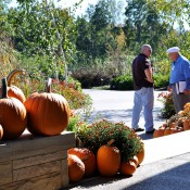 Ralph Mumma, a docent at the Arboretum, greeting a garden visitor at the Overlook Pavilion
