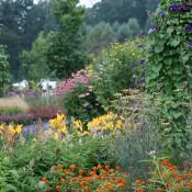 Pollinators' Garden blooms
