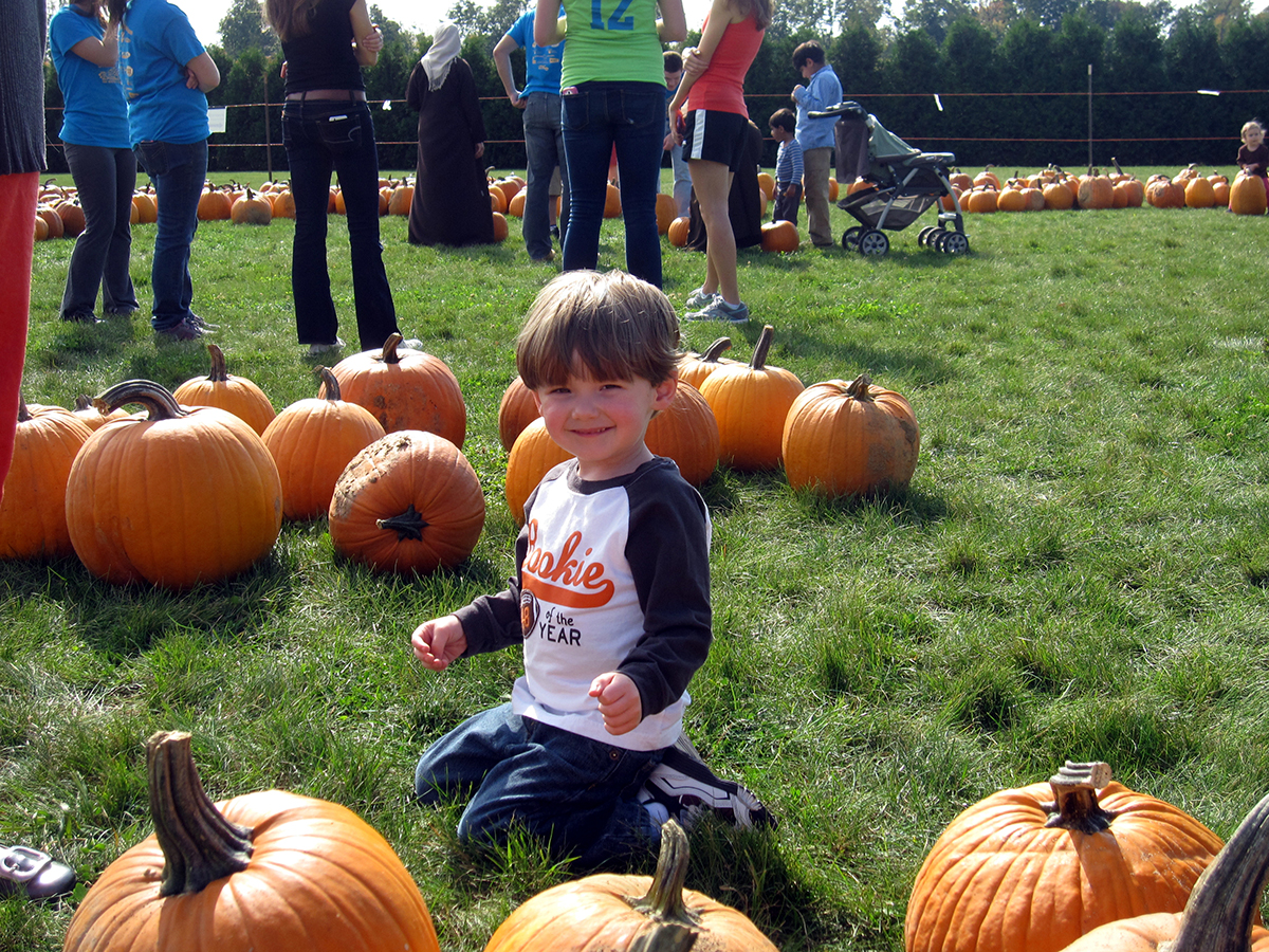 sitting-among-pumpkins