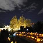 2015 10 16 Jack-o'-Lanterns and Night Sky