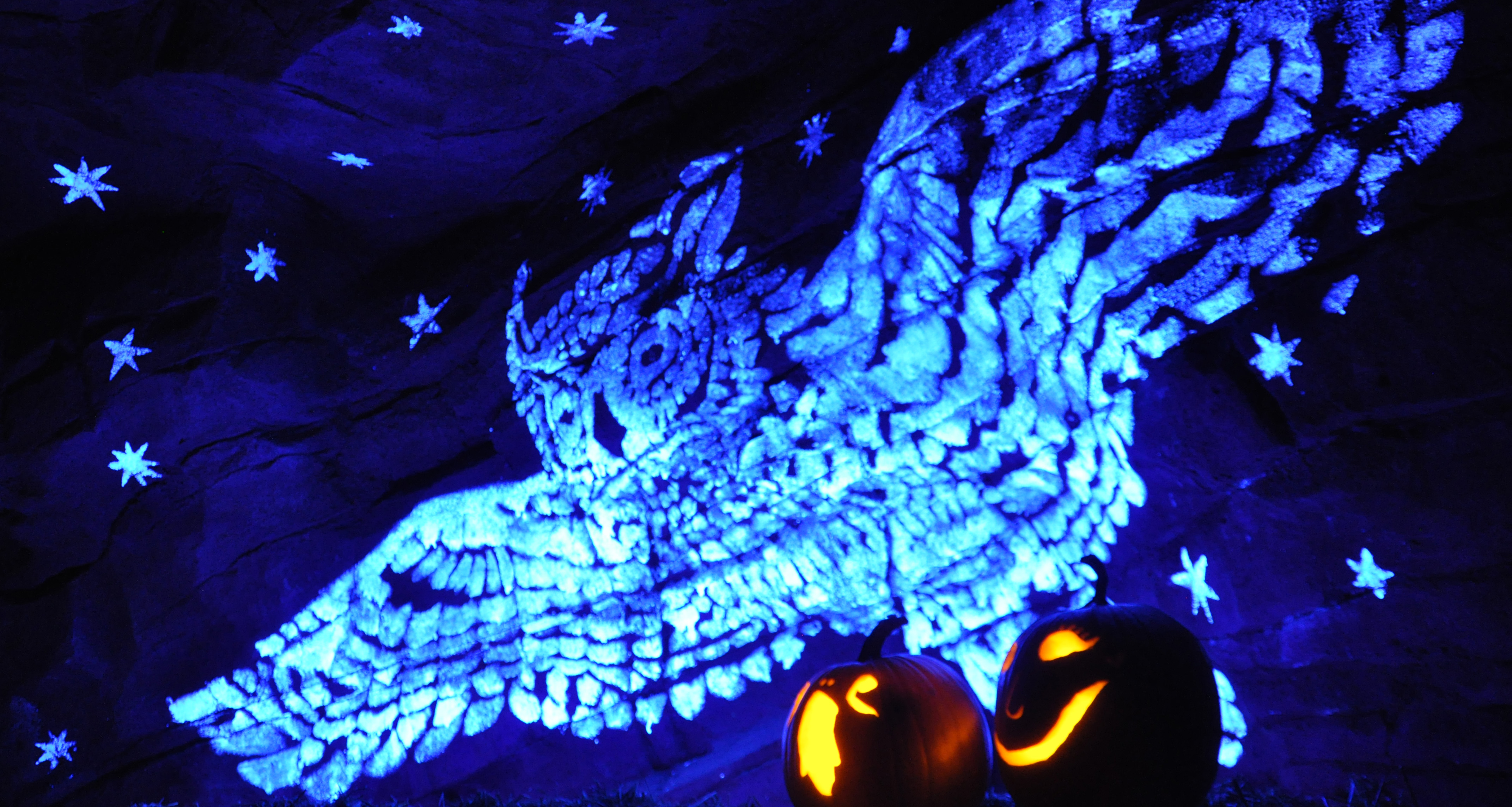 Owl in flight (2015 ultraviolet light art in limestone cave)