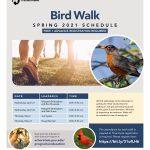 Spring 2021 Arboretum Bird Walk Schedule